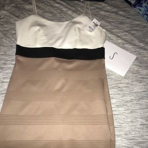 Charolette Russe fitted dress